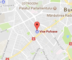 Vise Pufoase Google Maps